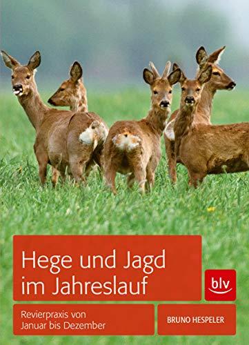 Hege und Jagd im Jahreslauf: Revierpraxis von Januar bis Dezember