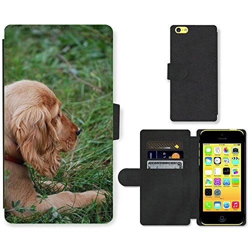 Just Mobile pour Hot Style Téléphone portable étui portefeuille en cuir PU avec fente pour carte//m00138521chien épagneul chiot coocker Animal//Apple iPhone 5C