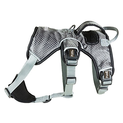 Hundegeschirr Anti Zieh Sicher Brustgeschirre Verstellbares Vest Harness Reflektierende Sport Training Sicherheitsgeschirre Atmungsaktiv Autogeschirr für Mittelgroße und Grosse Hunde (M, Silbergrau)