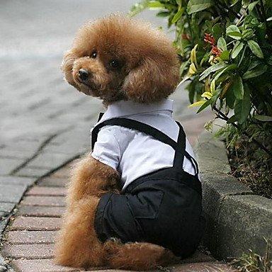 Imagen de perros disfraces esmoquin negro ropa para perro invierno primavera/otoño bloques boda cosplay , schwarz/weiß