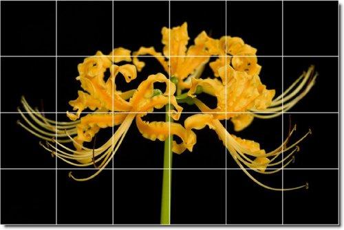 AZULEJOS FLORES FOTO MURAL 2  17 X 64 77 CM CON (24) 4 25 X 4 25 AZULEJOS DE CERAMICA