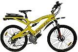 Elektro-Fahrrad, Vulcan Bike-Crosser, Mountainbike