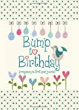 Bump to Birthday, Pregnancy & First Year Baby Journal : an award-winning journal/diary to help you hold onto memories of the growing bump, the birth & the first year with your baby (Parent & Child)