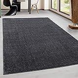 Teppich Kurzflor Modern Wohnzimmer Einfarbig Meliert Uni günstig Versch. Farben - Grau, 160x160 cm Rund