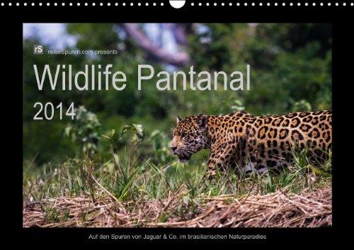Wildlife Pantanal 2014 (Wandkalender 2014 DIN A3 quer): Im Reich des Jaguar - einzigartige Wildtiere des brasilianischen Pantanals in schönen Bildern eingefangen. (Monatskalender, 14 Seiten)