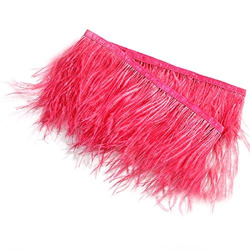 rosenice 2m Straußenfeder gefärbt Fransen mit Satinband Klebeband für Kleid nähen Handwerk Kostüme DIY Dekoration (hell - Klebeband Kleid Kostüm