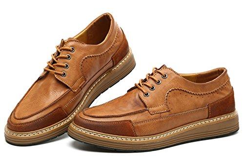 XTIAN , Chaussures à lacets homme Marron