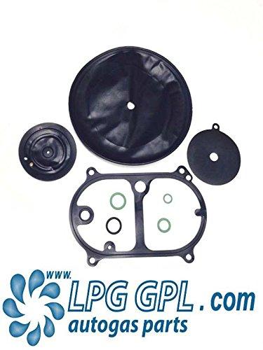 OMVL Dream XX1Reduzierstück/Vapouriser Rebuild/Service Kit 21SGI (Fuel Injector Cleaner Kit)