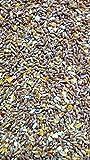 Kügler-Mühle Hühnerfutter Körnermischfutter Geflügelfutter 25kg Körnerfutter mit Muschelkalk