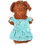 Hawkimin adidog xs Haustier-Hundekatze-Kleid-Plaid-Blumendekoration Spitze-Prinzessin Summer Breathable Dress Clothes