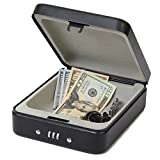 SEPOX Outdoor Portable Steel Safe Locking Case Storage Cabinet for Handguns, Small Items