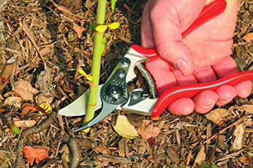 Felco Obstbau Und Gartenschere Nr 6 - 8