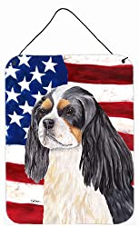 Carolines Treasures SC9114DS1216 Usa American Flag with Cavalier Spaniel Wall or Door Hanging Prints, 16 x 12, Multicolor