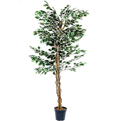 PLANTASIA® Ficus-Baum, Echtholzstamm, Kunstbaum, Kunstpflanze – Variante: 160 oder 190 cm, Schadstoffgeprüft