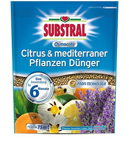 Substral Engrais osmocote Citrus & plantes méditerranéen