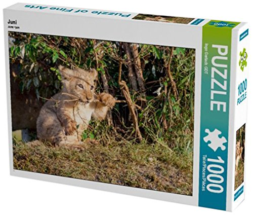 Preisvergleich Produktbild Juni 1000 Teile Puzzle quer (CALVENDO Tiere)