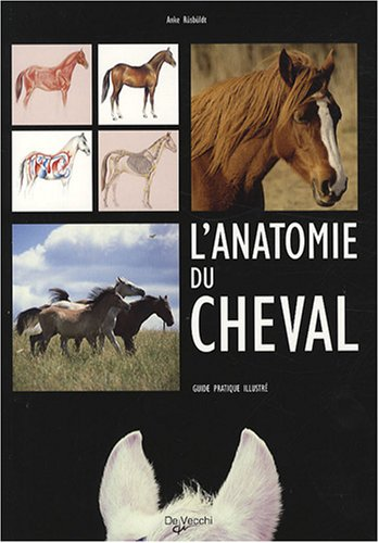 L'anatomie du cheval : Guide pratique illustré par Anke Rüsbüldt
