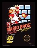 Nintendo Super Mario Bros. (NES Cover) 30 x 40 cm Objet Souvenir