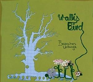 Wallis Bird In concert