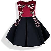 FXFAN Ilustración de Flor 3D de Encaje sin Mangas para Niños Vestido de Princesa de Fiesta ZHANGM (Color : Rojo, Tamaño : 120)