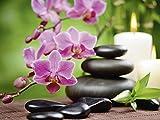 Artland Qualitätsbilder I Wandtattoo Wandsticker Wandaufkleber 40 x 30 cm Wellness Zen Stein Foto Pink Rosa A6NL Zen Basaltsteine und Bambus auf Holz