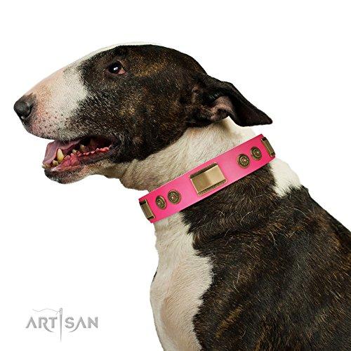 "FDT Handwerker Hundehalsband, Leder, rosa mit Messing Decor–\""Vintage Trimness–11/5,1cm (40mm) breit"