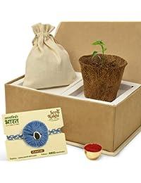 SeedRakhi for Brother - Natural Eco-Friendly Cotton Embroidery with Planter & Roli Pack - Rakhi Set For Brother; Kids; Rakshabandhan Gift for Brother; Designer Sustainable Rakhi Set