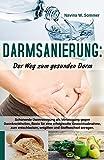 Darmsanierung: Der Weg zum gesunden Darm: Schonende Darmreinigung als Vorbeugung gegen Darmkrankheiten,Basis für eine erfolgreiche Gewichtsabnahme,zum ... und Stoffwechsel anregen (German Edition)