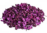 NaDeco Cotton Pods lila/aubergine 250g   Baumwoll Knospen   Deko Blüten   getrocknete Naturdeko   Trockenblumen