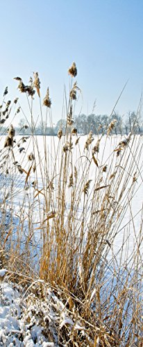haga-wohnideen.de Textilbanner Viktor 90 cm x 180 cm Wanddeko Textilbild Banner Fotoprint