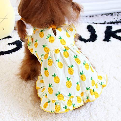 miaoxuewei Ananas Rock Hündchen Kleidung Sommerkleid Teddybär Katze Haustier Kleiner Hund Bomei Bi Bär Sommer Dünnschliff