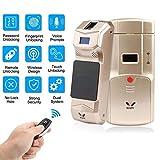 WAFU Wireless Smart Unsichtbarer Fingerabdruck Remote Lock Keyless Entry Türschloss/Sicherheit Diebstahlsicherungen Mit Fingerabdruck-Tastatur