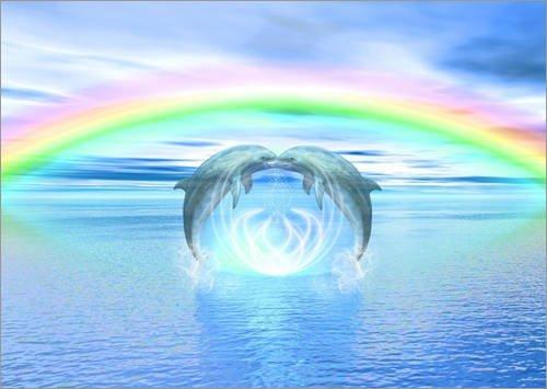 Posterlounge Alubild 120 x 90 cm: Dolphins Rainbow Healing von Dolphins DreamDesign -