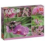Jumbo Spiele 18354 - Orchideen, 1000 Teile