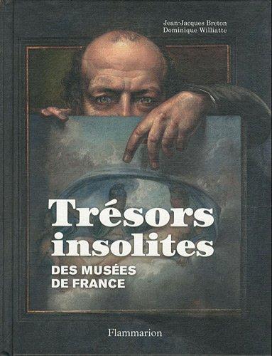 Trésors insolites : des musées de France par Dominique Williatte