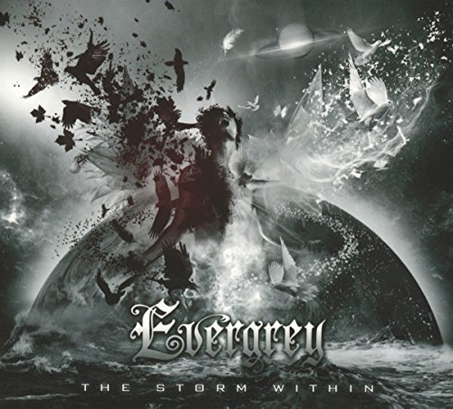 the-storm-within
