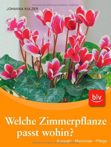 Welche Zimmerpflanze passt wohin?-Set (Buch + Aquasticks): Auswahl - Merkmale - Pflege -