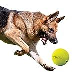 Nerf Dog Squeak Ball, 4.25-Inch, Red 11
