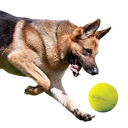 Nerf Dog Squeak Ball, 4.25-Inch, Red 5
