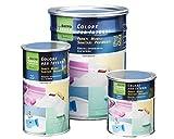 Vernice all'acqua per pavimenti mobili e sanitari GAPI COLORI PER INTERNI vari colori - ML.500, BIANCO