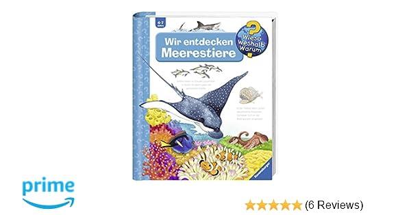 Tolle Seepferdchen Färbung Seite Fotos - Dokumentationsvorlage ...