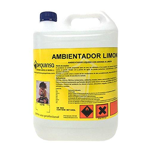 ambientador-con-aroma-a-limon-envase-de-5-litros