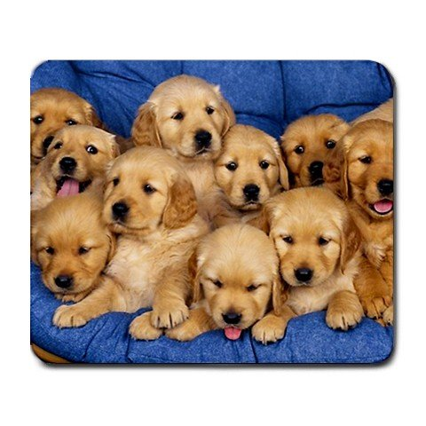 1 X Golden labs litter puppies Large Mousepad Mouse Pad Great Gift (Puppy Litter)