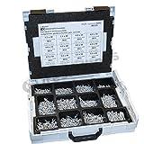 Dresselhaus 0/06/000/8412///06Sortimo L-Boxx equipado con Jd Plus Universal de tornillos Pan Head con Cruz (galvanizado, CE, cumple, Gris