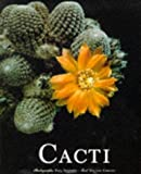 Cacti (Evergreen Series) by Vincent Cerutti (1998-03-01)
