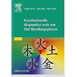 Konstitutionelle Akupunktur nach den fünf Wandlungsphasen
