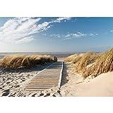 Fototapete 350x245 cm - ALLE TOPSELLER auf einen Blick ! Vlies PREMIUM PLUS - NORTH SEA DUNES - Strand Meer Nordsee Ostsee Beach Wasser Blau Himmel Sonne Sommer - no. 038