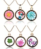 Yumilok Mehrfarbige Trockene Blumen Transparent Herz/Rund Anhänger Halskette Legierung Glas Flasche Kettenänhanger für Damen Mädchen (Multi-A)