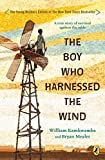 Best Teen Boys - The Boy Who Harnessed the Wind Review