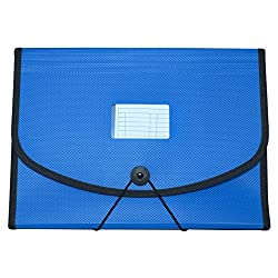 Manbhari Polypropylene A4 size File folder with 13 pockets(Blue)